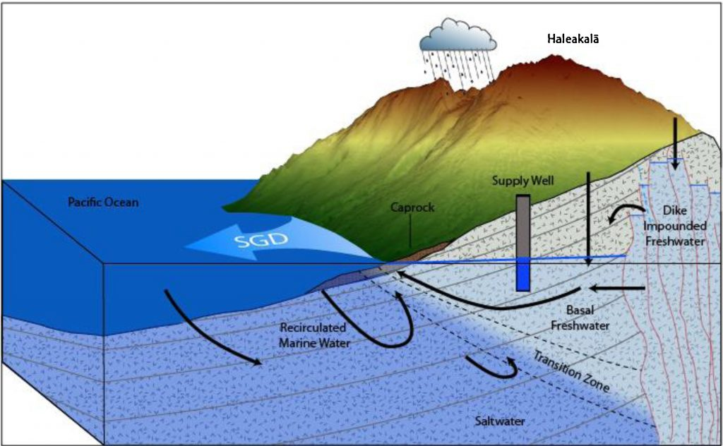 Submarine Groundwater Discharge
